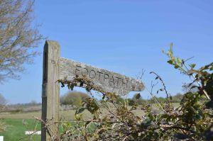 wood waymarker